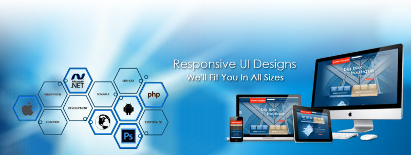 Our Website Development Services